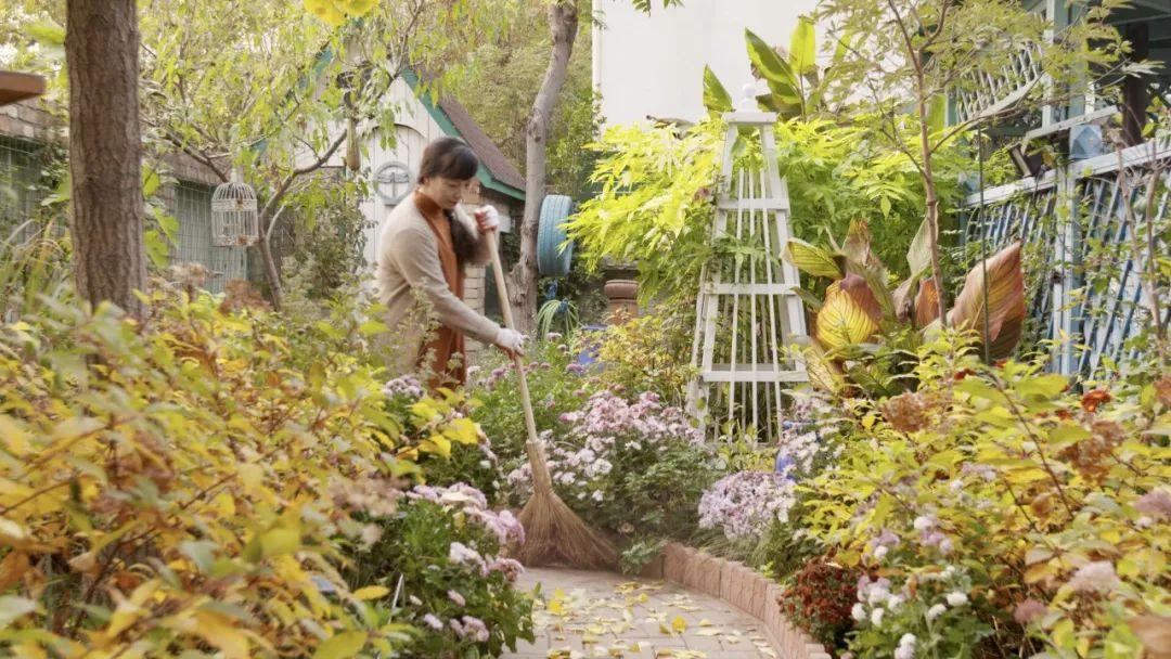清华理工男的浪漫:妻子生日送700㎡花园,爱你就要养着你