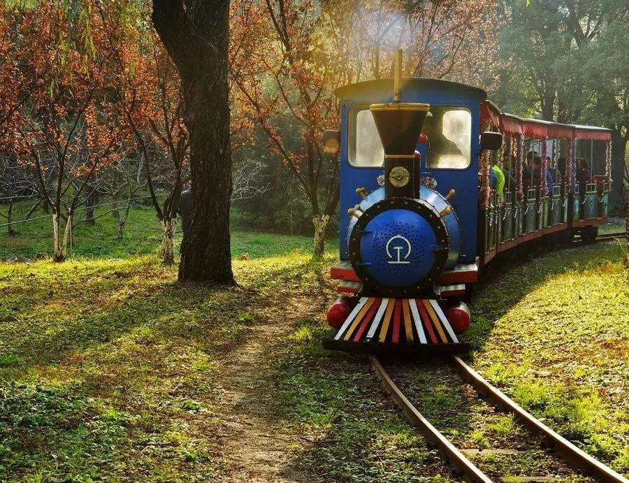 @所有人 说出你与老公园的故事 领浦江郊野公园奇迹花园门票