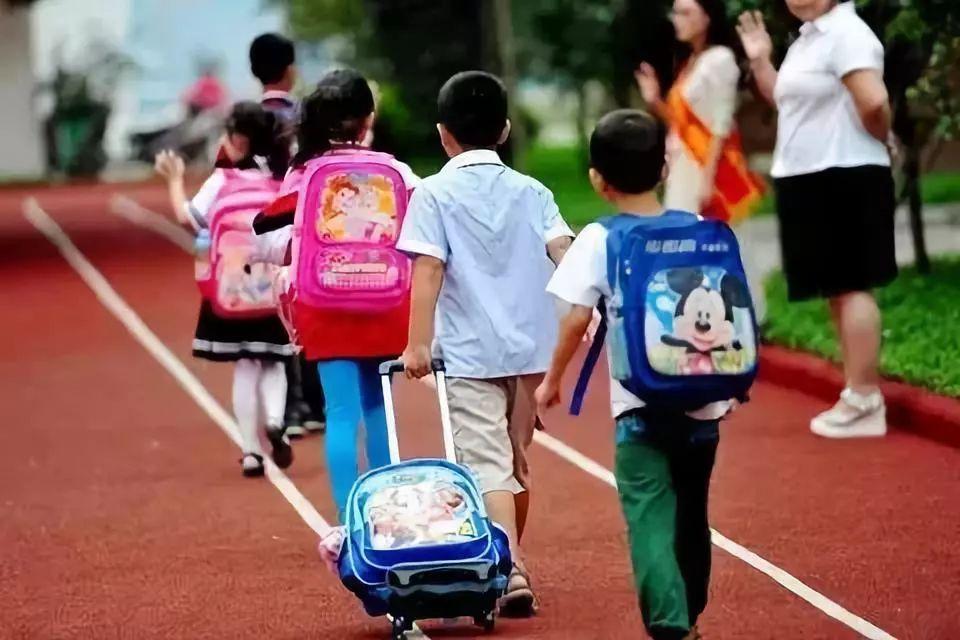 教育|创新办学体制,河西区将新增10所幼儿园,3所小学