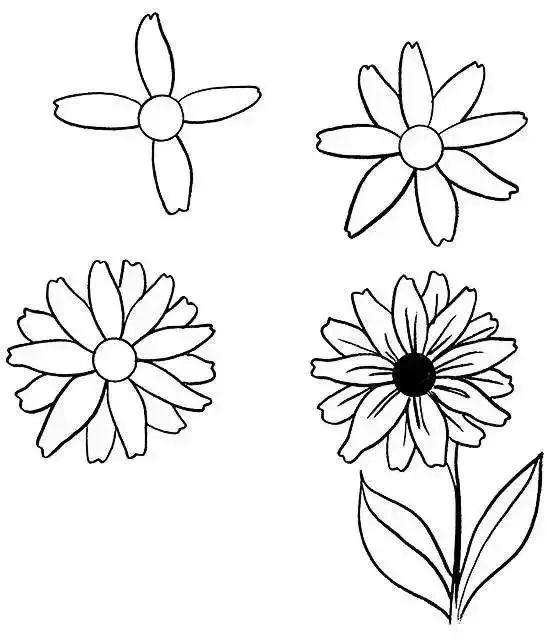 人人都会画 临摹资料植物花卉,留着周末画