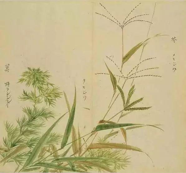 风雅千年 这一座不该被淡忘的中国人文美学高峰