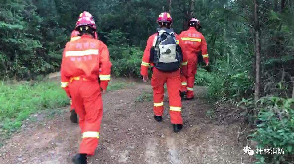 救援 | 男子上山采药不慎踩空被困 桂林消防翻山越岭营救