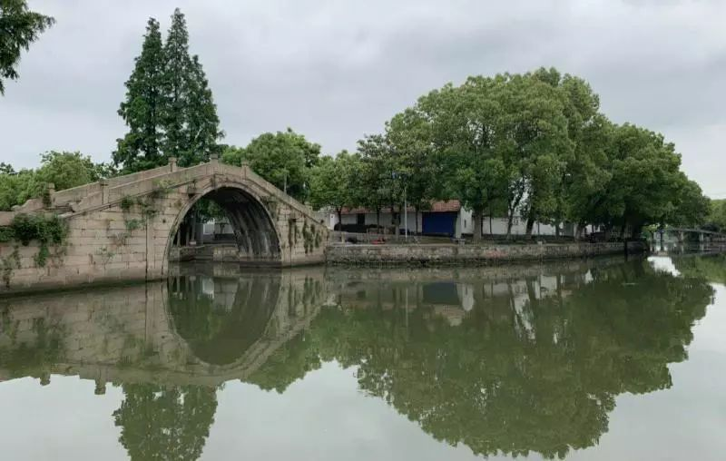 金泽镇人口多少2021年_人口普查