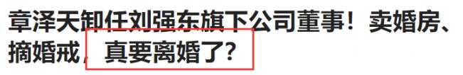 如果奶茶妹妹和刘强东离婚,能分到京东多少钱