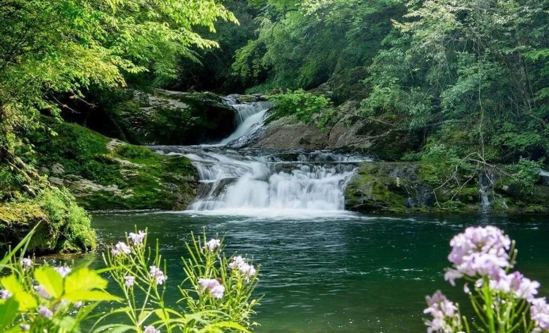 周末啦!陕南初夏私藏的9个绿色仙境,才是真正的洗眼圣地~