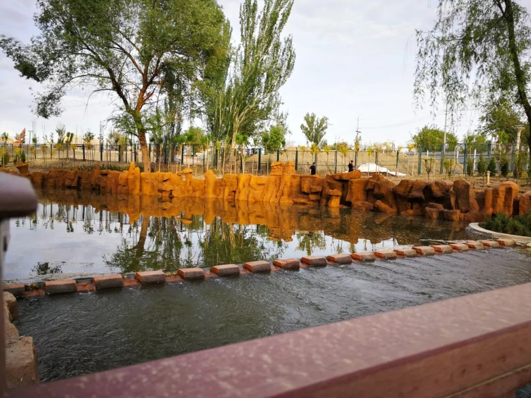 来哈密湿地公园洗洗肺吧~休闲健身娱乐的好去处!