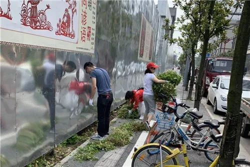 眉山市东坡区:志愿服务美环境 打响创卫攻坚战