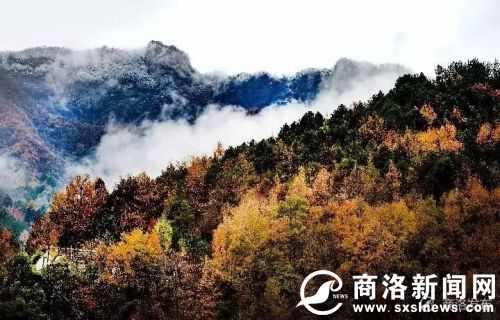 秦岭到底是怎样的一座山?图片