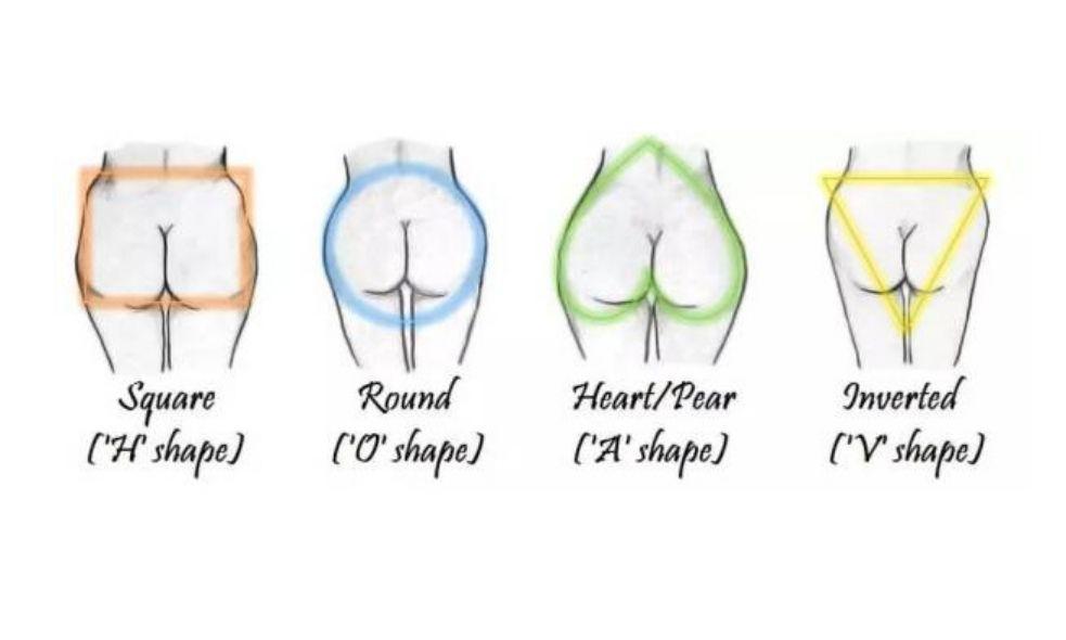 臀中肌和臀小肌的定位图片_如何拥有一颗女明星的完美翘臀?_臀部