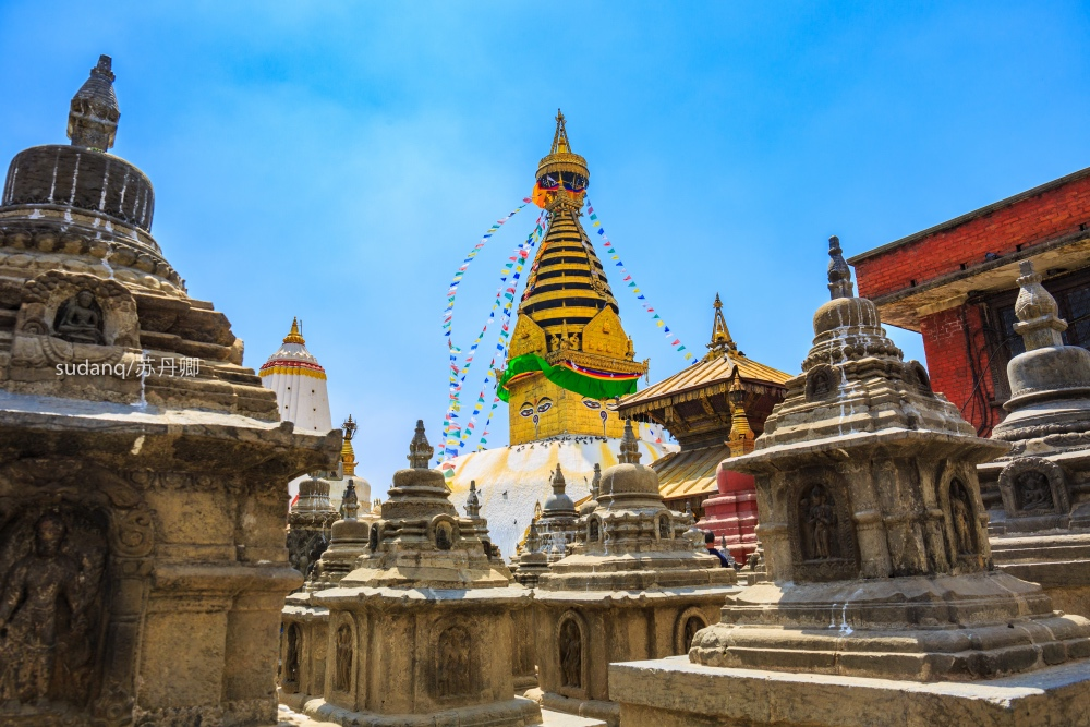 尼泊尔同印度一样脏乱差?那你一定没去过猴庙,可谓是天堂