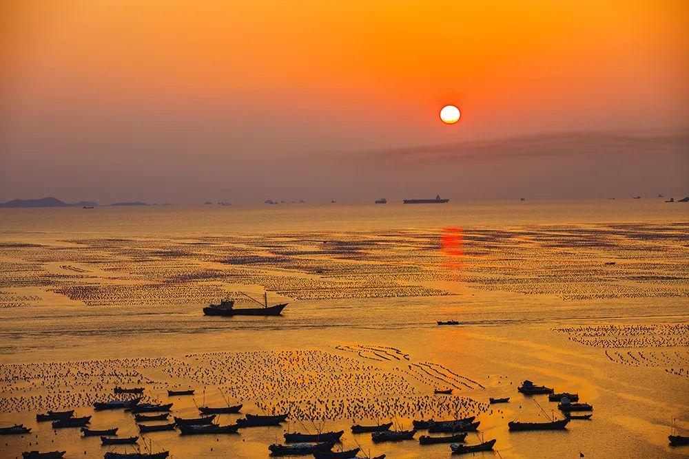 万万没想到,舟山这两种海鲜居然长在这么美的地方!图片