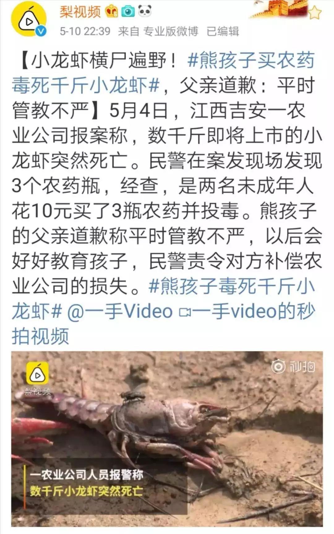 2个熊孩子毒死上千斤龙虾:一句「他还是个孩子」,害了多少人!