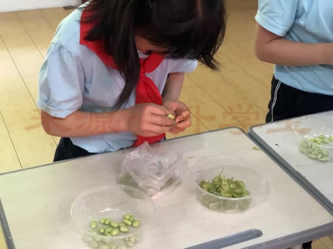 杭州一小学让学生回家剥毛豆:能防近视