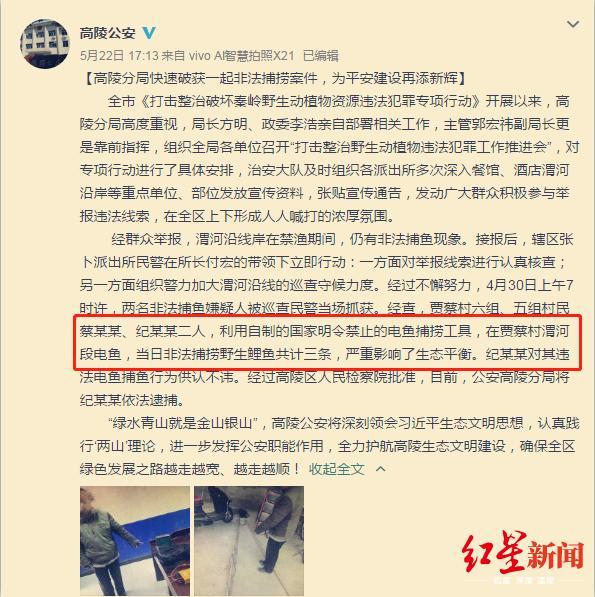 陕西2村民捕3条鲤鱼被批捕官方:不在数量,电击捕鱼违法