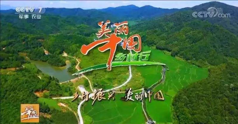 又上央视了!CCTV【美丽乡村中国行】长篇报道【梦里老家】