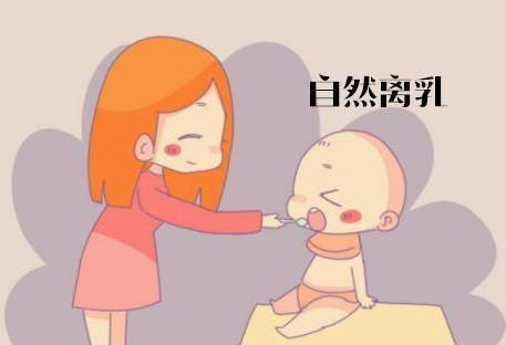 什么时候断奶_宝宝什么时候断奶好?答案并非一岁,这是我听过的最好回答!