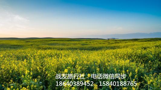 2019内蒙科尔沁草原浩坦草原一日旅游,内蒙草原旅游去哪里好,草原旅游攻略