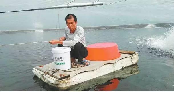 """老虾工分享""""养虾经"""",看连续亏损数年的他如何用三招逆袭"""