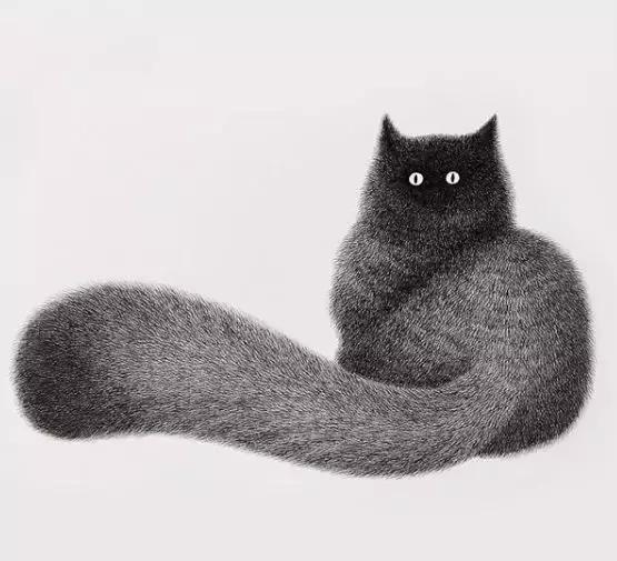 维美撸文_撸猫还能这么撸?真的见识到了!