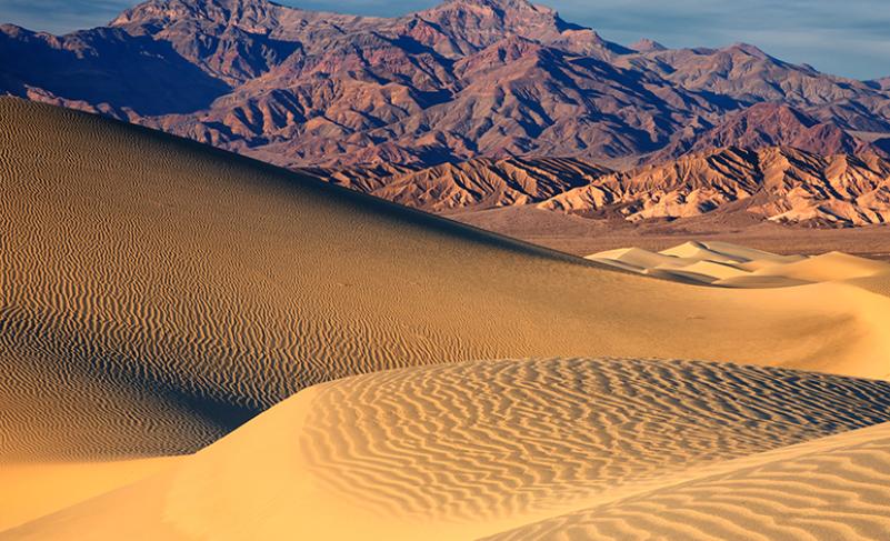 原创世界最独特的沙漠,湖泊遍地鱼虾成群,降雨量是撒哈拉的300倍