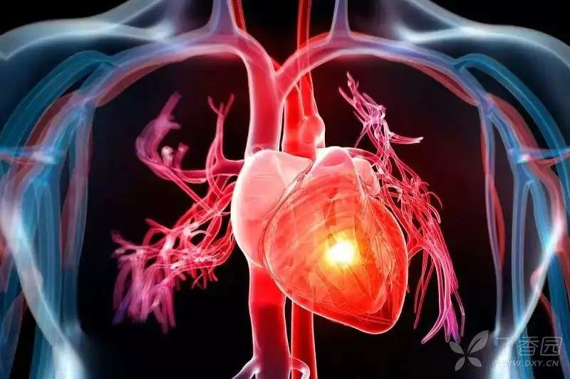 心脏不好的人注意了!夏季心脏负担最重,快别防暑了,养心才重要!