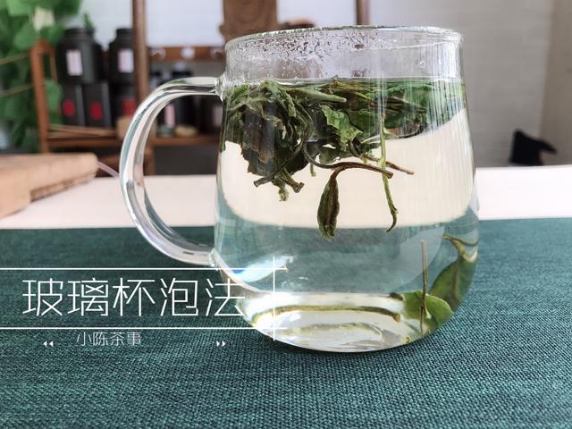 看图识白茶三个角度教你正确辨别春茶中的白牡丹与春寿眉!