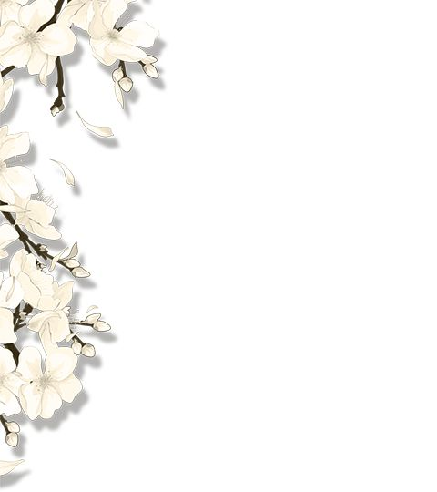 瀹���姝d����㈢��璁�(绯诲��涔�绗�4杈�)