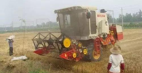 """农机手是一个高薪工作么?为什么他们经常""""哭穷""""!"""