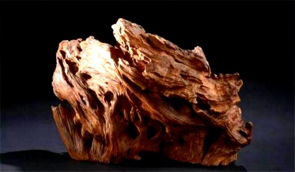 原创隋炀帝赏东瀛人一块木头,现值1亿,同类另一块木头卖6000元1克