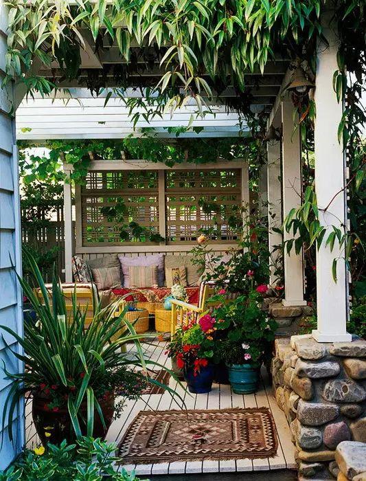 老来有个小院,不胜欢欣!