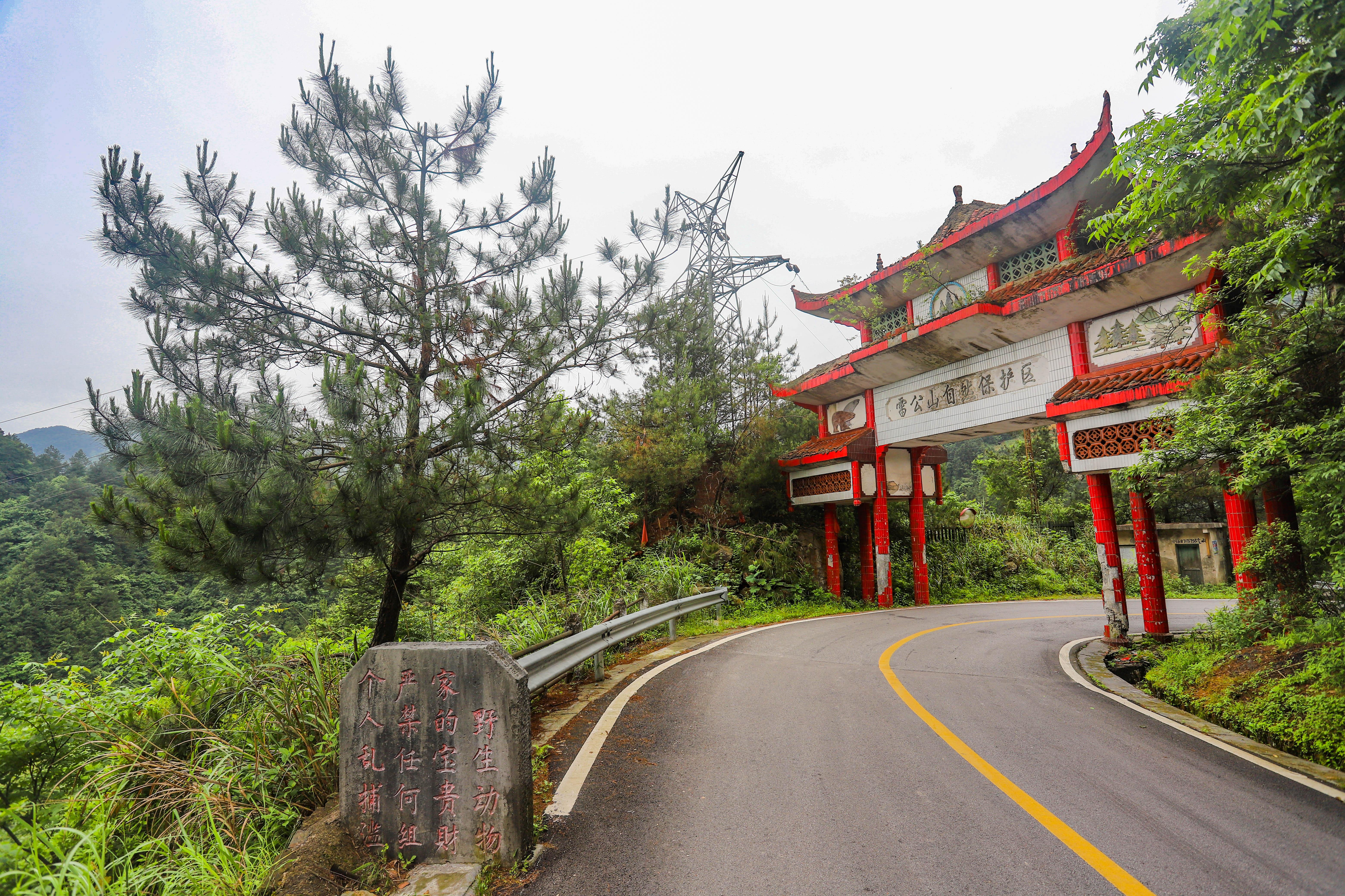 乡村旅游网:黔东南一夜爆红的苗族村落,被誉为梯田托起来的村庄,鲜为人知