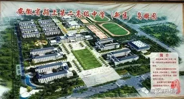 颍上县2019年经济总量_经济图片