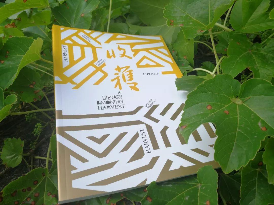 2019-3《收获》| 短篇:杨广义(双雪涛)