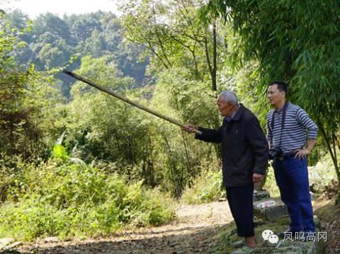 罗继伦:凤冈安村剿匪战中的亲历者