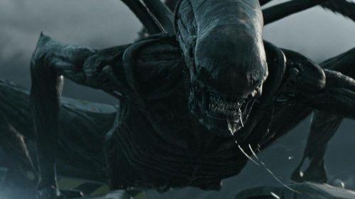 """雷德利确定执导第三部《异形》前传,""""法鲨""""也有望回归"""