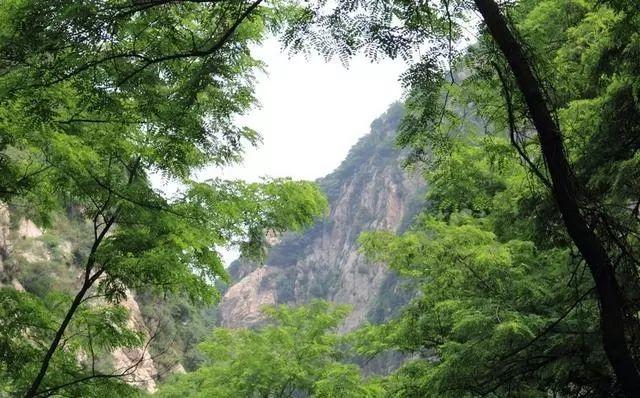 【圭峰山】6月2日周日 徒步岭南名山圭峰山 品尝绝味鸭嘴鱼(图2)