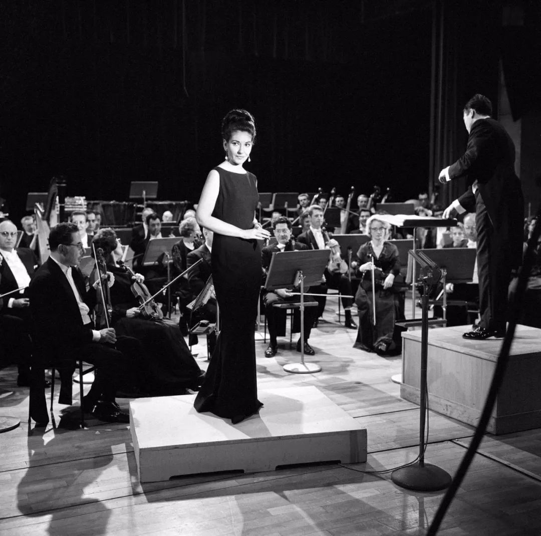 <b>10位推介大使阵容公布 深情致敬最伟大的歌剧女神</b>