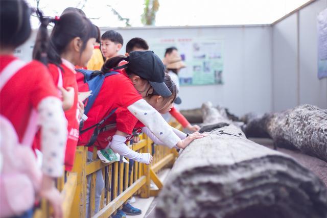 近十年国内外旅游中国生态旅游发展战略观音山研讨会6月2日在东