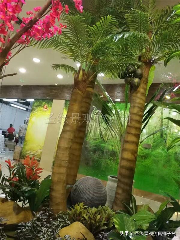 圣缘景观仿真椰子树|椰风伴海韵,琼崖尽是春.