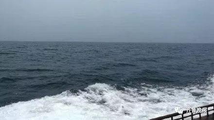这次真的酸了!有人出价68万元,竞拍一片海的使用权送给...