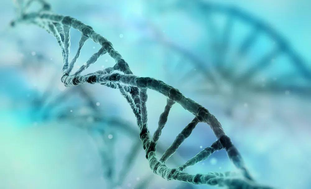 基因检测+人工智能,肿瘤是否依旧不可战胜?