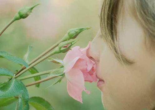 音频版《子宫情事》| 第6回:周而复始自然香