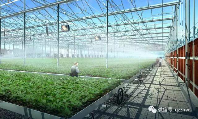 智能温室大棚监控系统管理温室有哪些优势