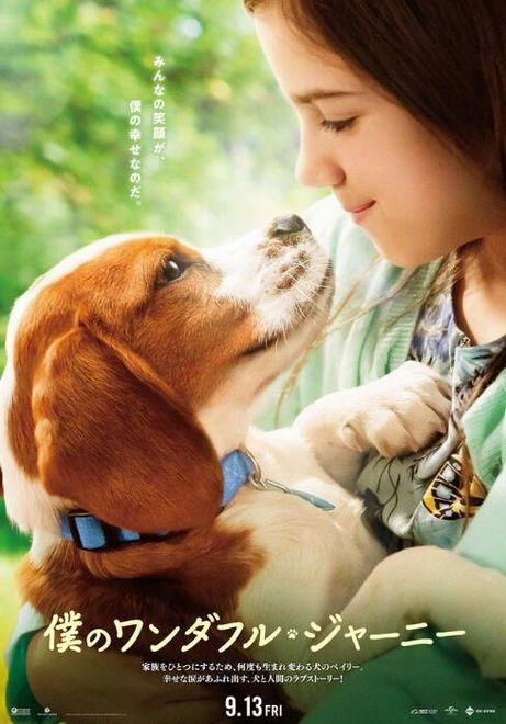 日韩系列电影_电影《一条狗的使命2》日本版海报曝光