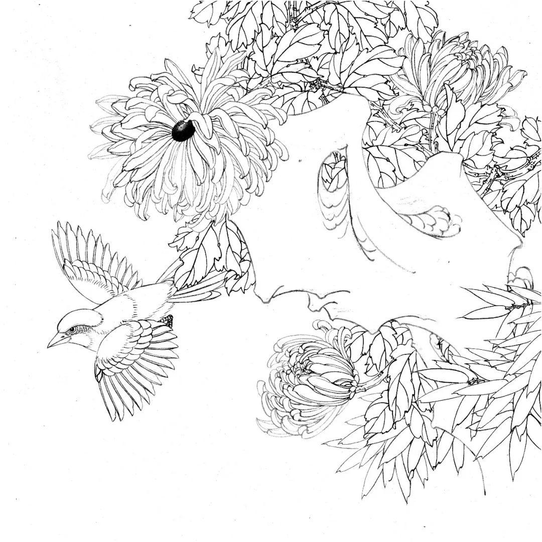 你想要的工笔花鸟白描线稿,都在这了图片