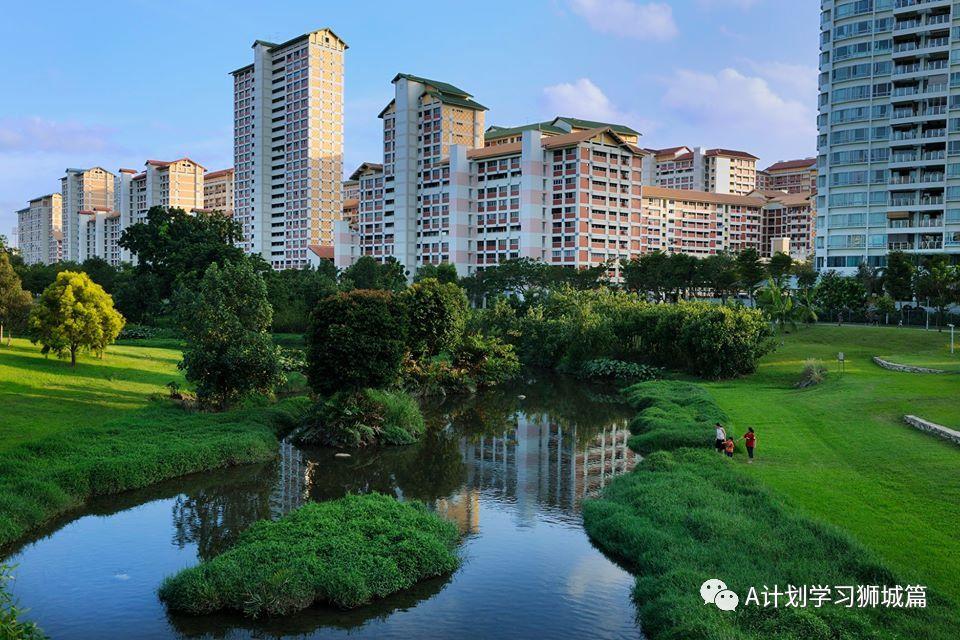 生活资讯_新加坡教育生活资讯(2019.05.29)