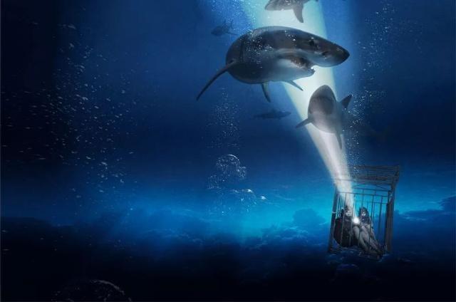 星二代闪耀!《鲨海47:猛鲨出笼》发布新预告