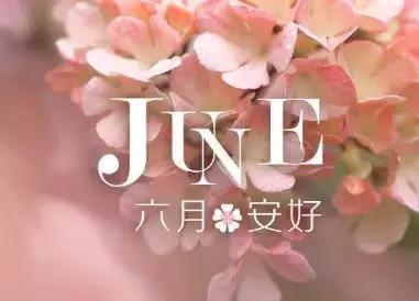 6. 五月再见,六月你好.