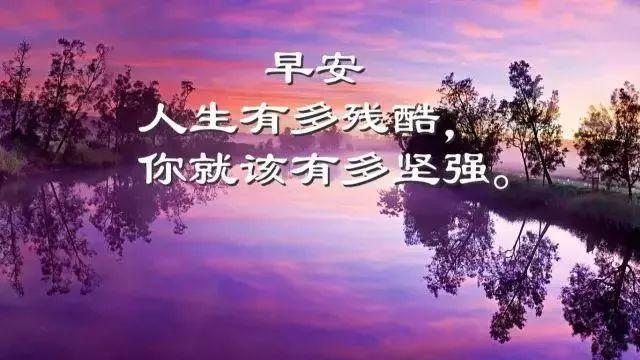 早安心语图片带字2019 早安语录励志短句