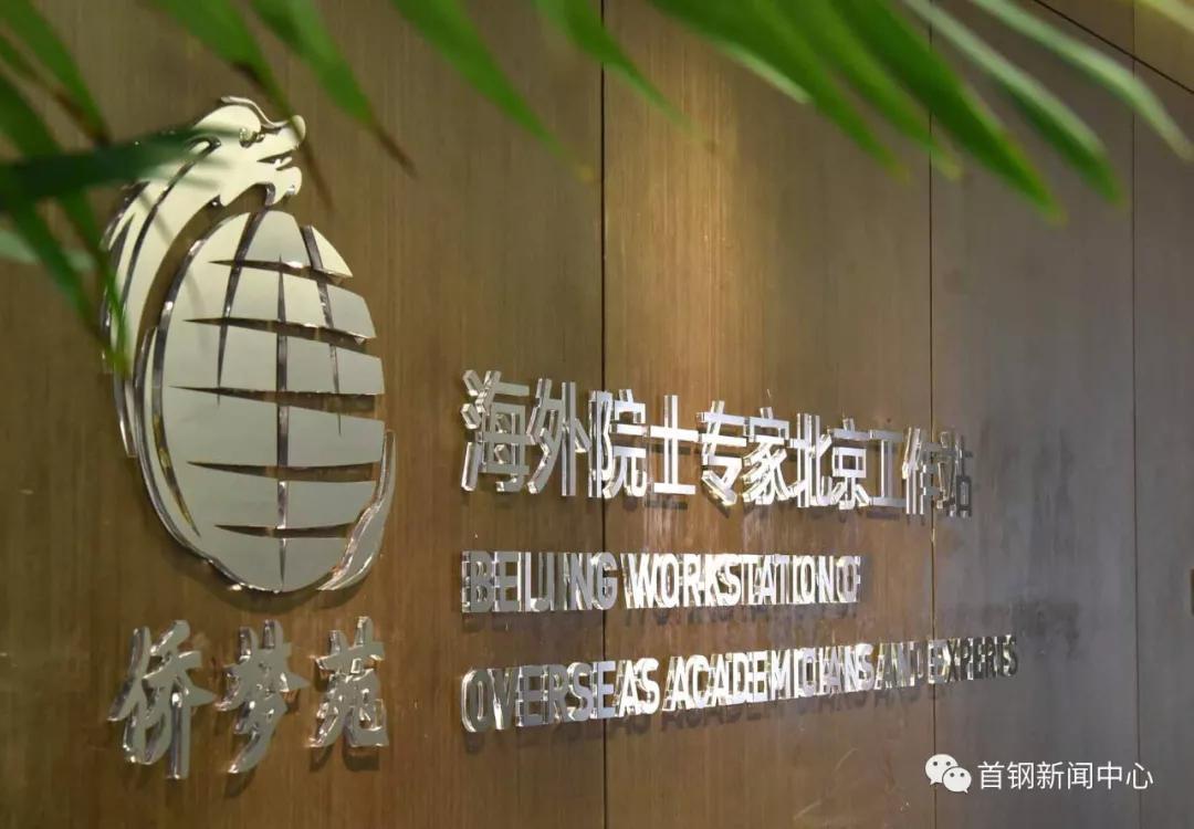 海外院士专家2019北京论坛建言献策